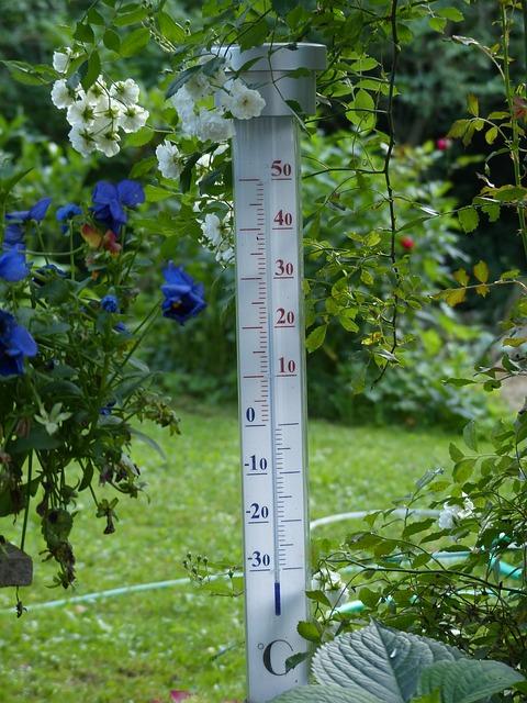 термометр, градусник бытовой